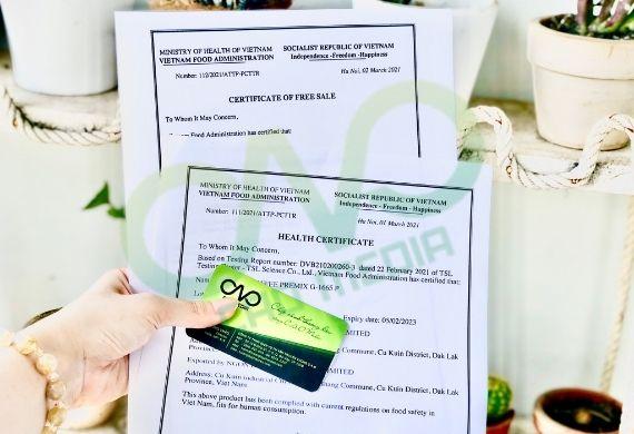 Thực hiện giấy chứng nhận y tế cho vỏ quế xuất khẩu